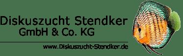 Stendker Dealer